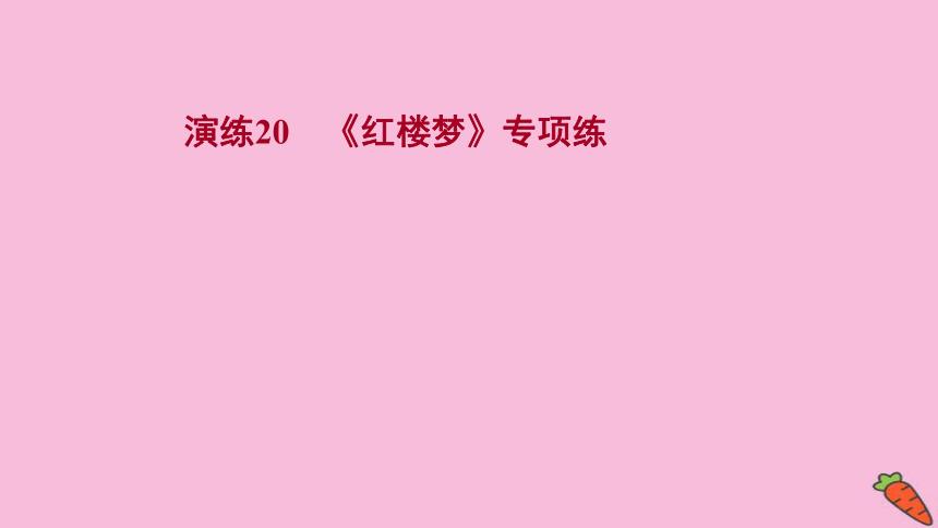 2022版高考语文人教版一轮复习课件:专题提升练 演练20 《红楼梦》专项练(57张PPT)