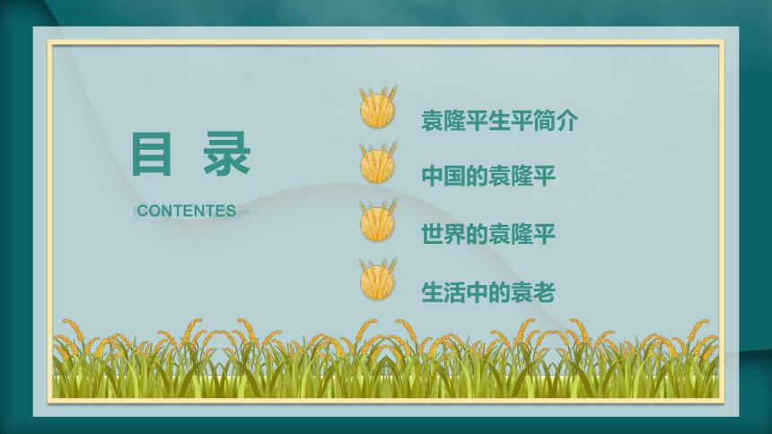 我心目中的英雄——袁隆平 课件(23张PPT)