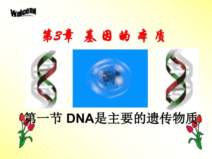 人教版生物高中必修二3.1-DNA是主要的遗传物质(57张ppt)