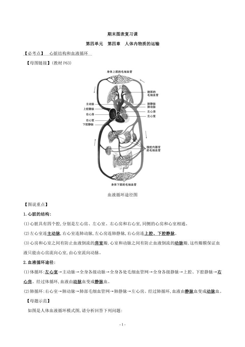 第四章 人体内物质的运输 图表复习学案