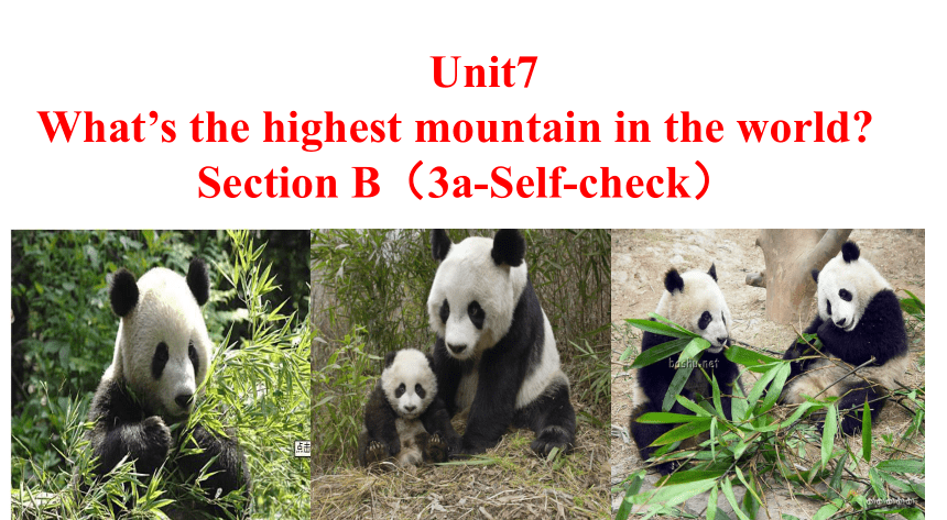Unit 7 What's the highest mountain in the world? Secton B 3a-self Check  课件(共15张PPT;无音视频)