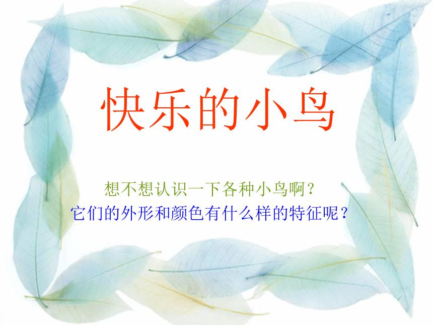 岭南版一下:第5课 快乐的小鸟 课件(27张PPT)