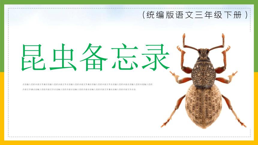 4昆虫备忘录 课件(共37张PPT)