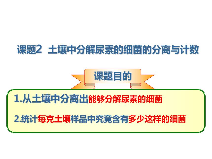 人教版选修1高中生物课题2:土壤中分解尿素的细菌的分离与计数(27张PPT)