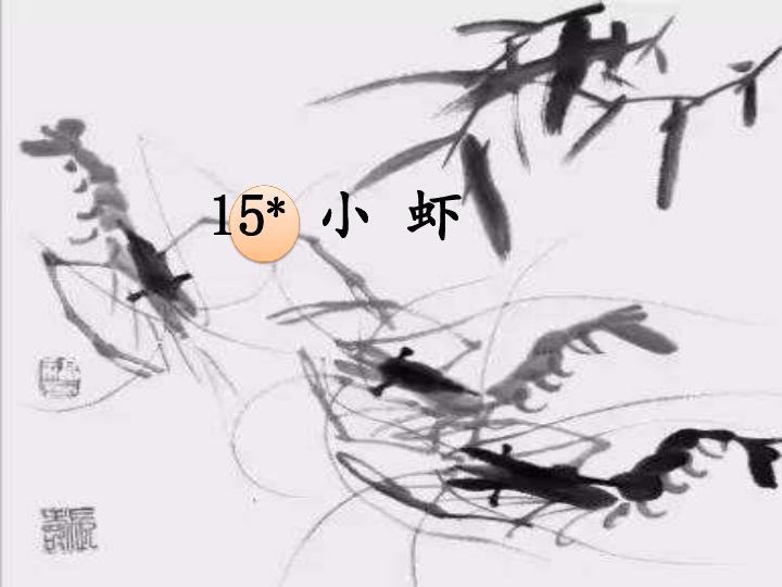 15小虾   课件(共29张)