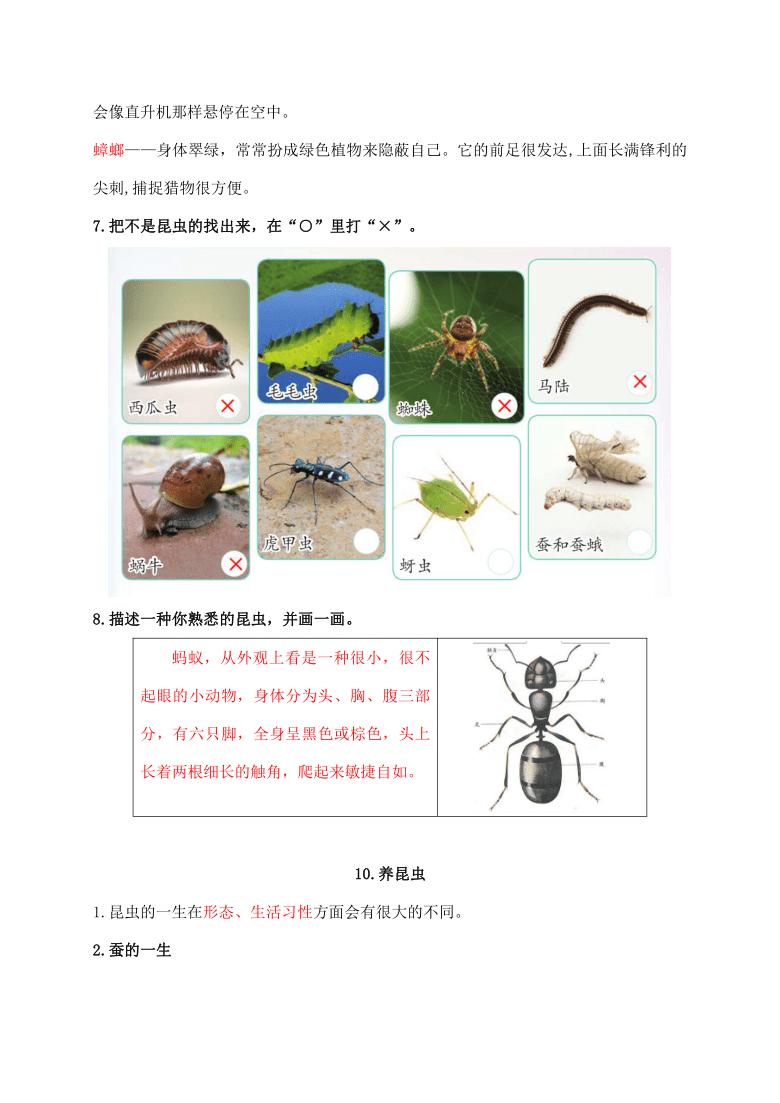 2021新苏教版科学四年级下册第三单元《昆虫》知识点整理