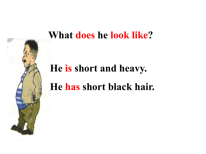What does he look like ?Section B 2a-2c课件(共18张PPT)