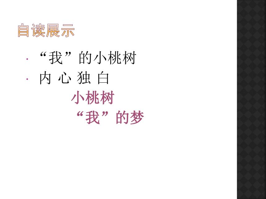 第19*课《一颗小桃树 》课件(22张PPT)