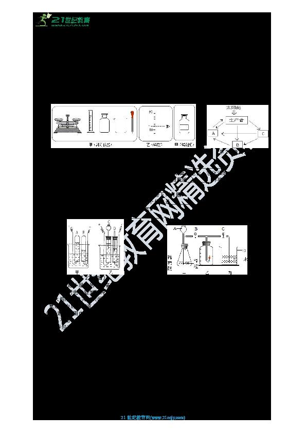 HS版七年级下册期末自主测试卷(2)(解析版)