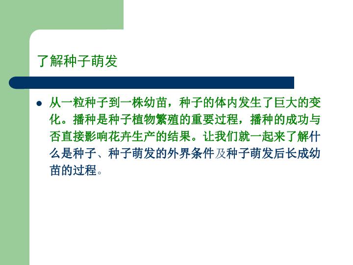 草花種子播種指南課件(15張幻燈片)