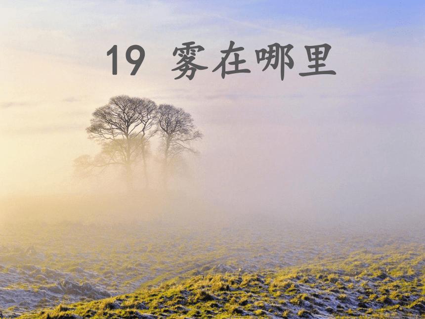 19 雾在哪里    课件 (共29张PPT)