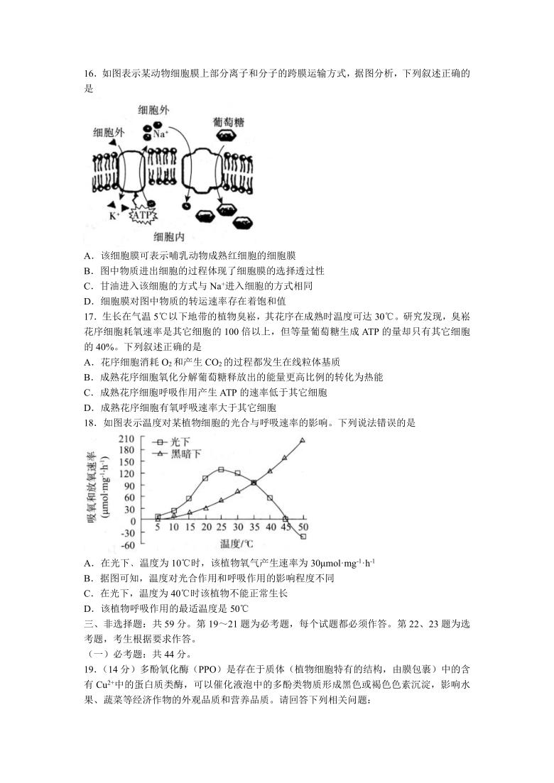 河北省张家口市2020-2021学年高二下学期期末教学质量监测生物试题(Word版含答案)