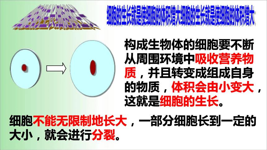 2021——2022学年人教版七年级生物上册2.2.1 细胞通过分裂产生新细胞课件(16张PPT)