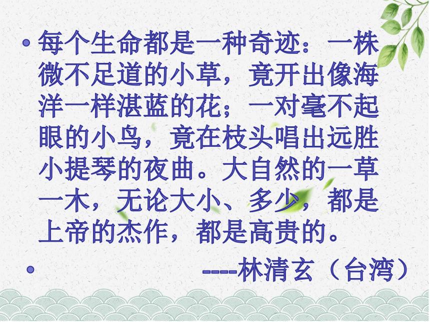 第18课《紫藤萝瀑布》课件(共15张ppt)