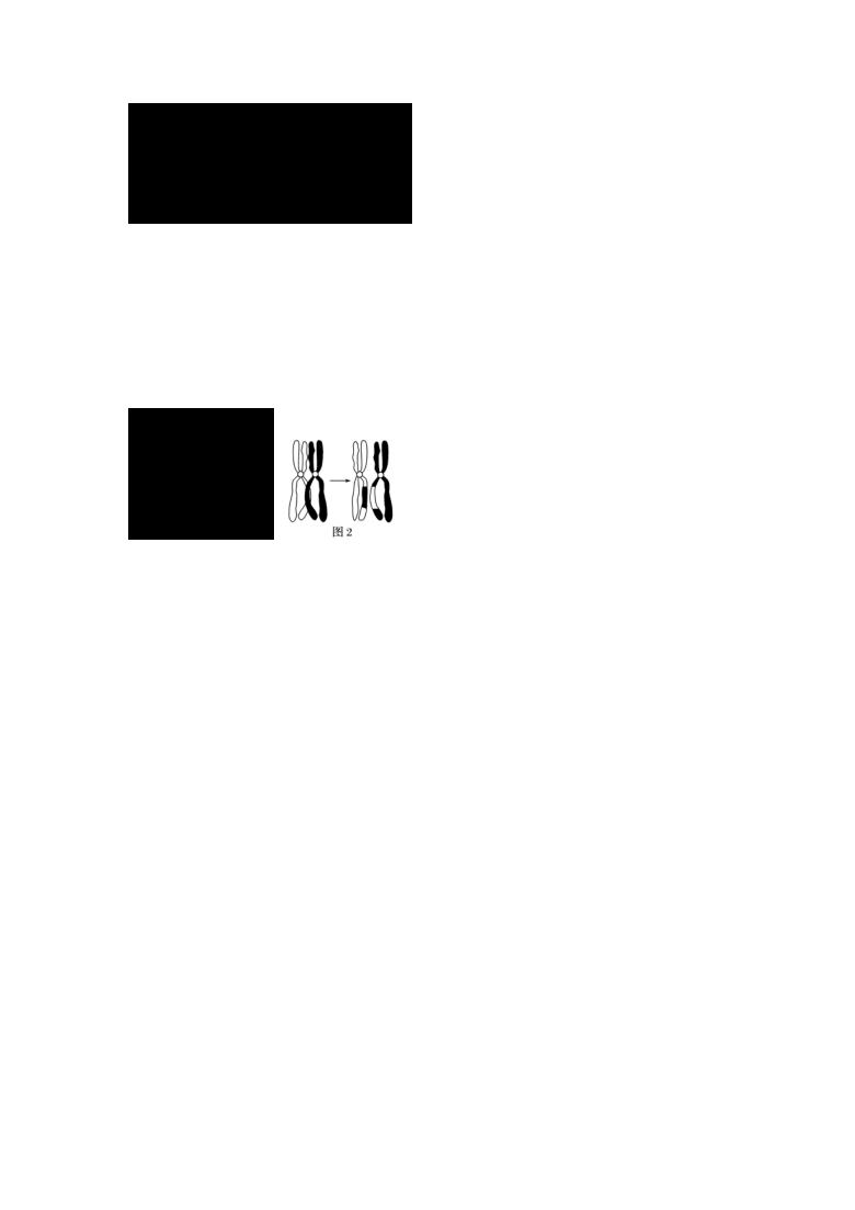 河北省衡水市桃城区第十四中学2020-2021学年高一下学期期末考试生物试题 Word版含答案