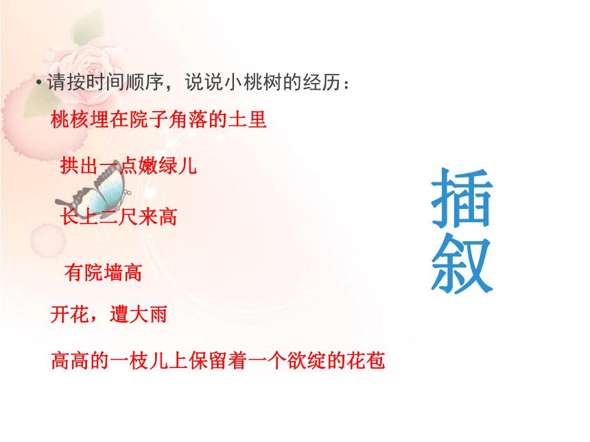 第19*课《一颗小桃树》课件(共20张PPT)