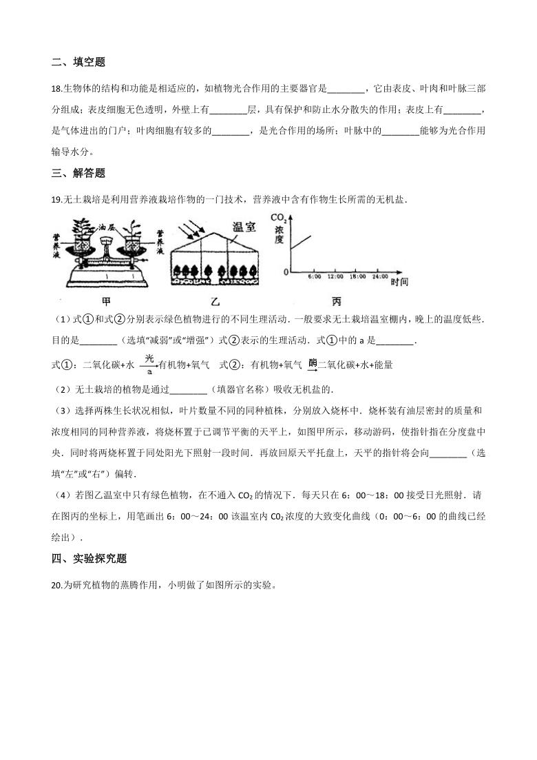 2020-2021学年浙教版科学八年级下册 4.5植物的叶与蒸腾作用 同步练习(含答案)