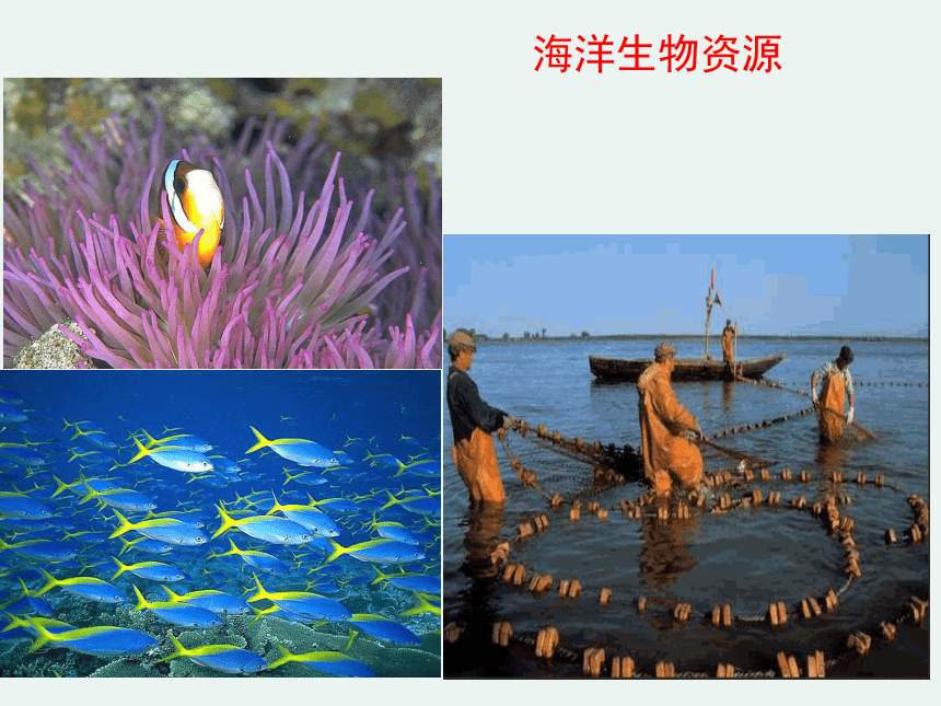 2020-2021学年高一化学4.1.2 海水资源的开发利用精编课件(人教版必修二)(共30张ppt)