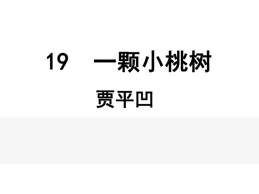 19 一棵小桃树 课件24张PPT