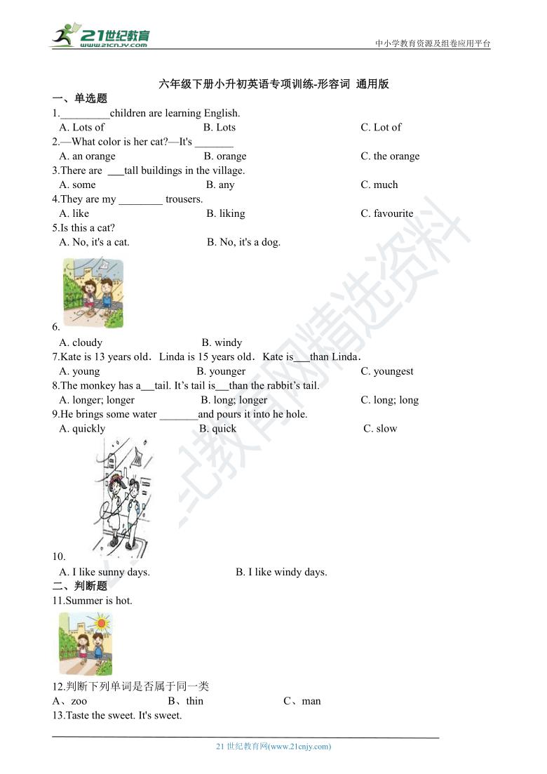 小升初英语专项训练 形容词 通用版(含答案解析)