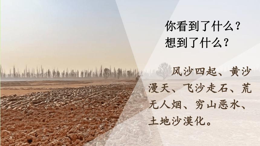 19《青山不老》课件——2020-2021学年六年级语文下册部编版(五四学制)(46张PPT)