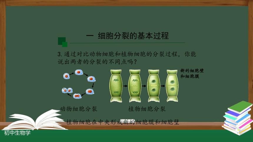 2.2.1 细胞通过分裂产生新细胞-课件(共22张PPT)