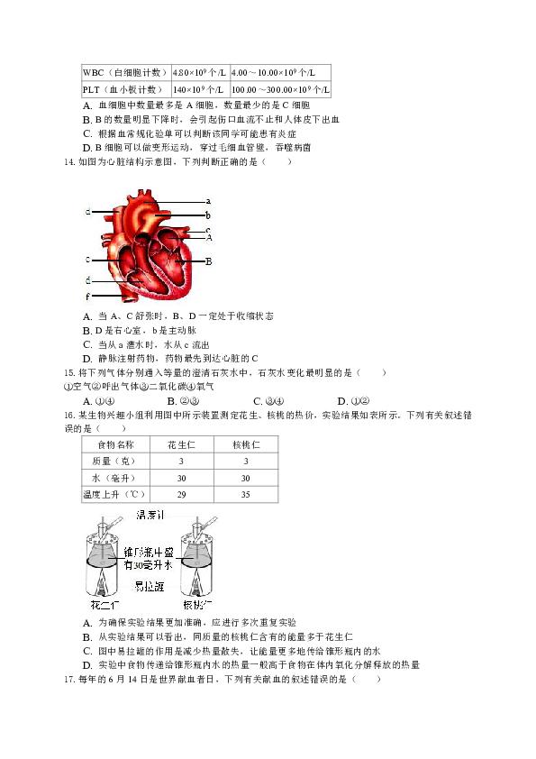 人教版  七年级生物期中卷(考试范围:1-4章)(无答案)