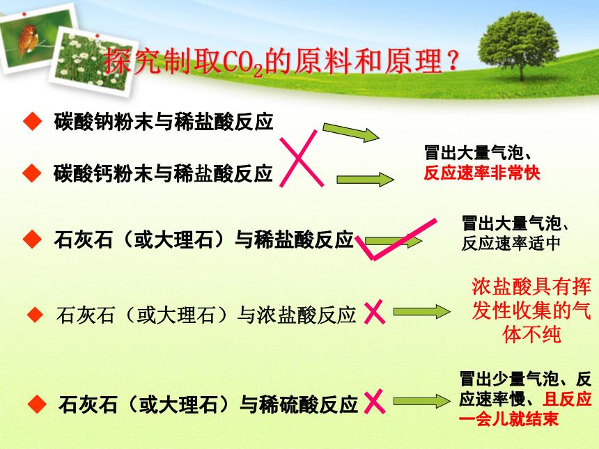 2021-2022学年人教版九年级上册化学 第六单元 课题2 二氧化碳制取的研究(19张PPT)