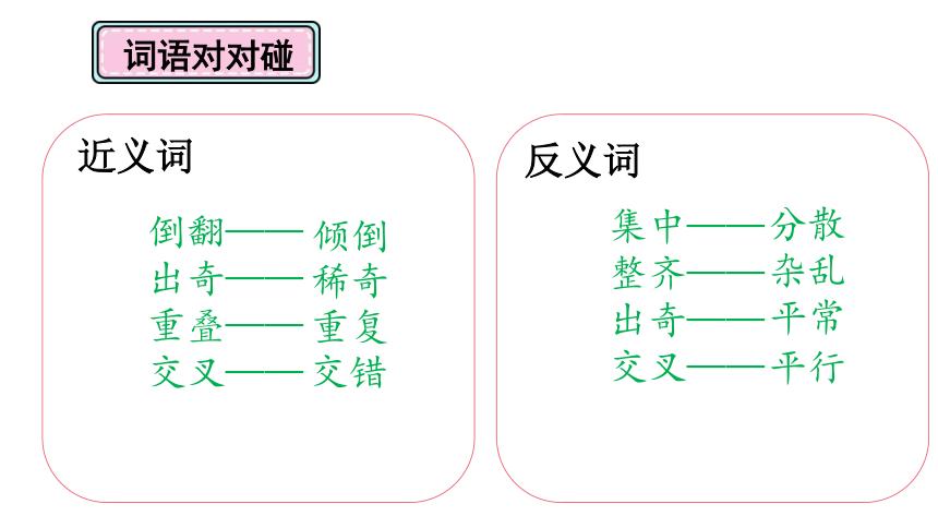 10绿    课件(共24张PPT)