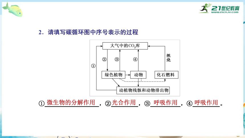 高三生物三轮复习专项突破13  生态系统的结构与功能(共29张PPT)