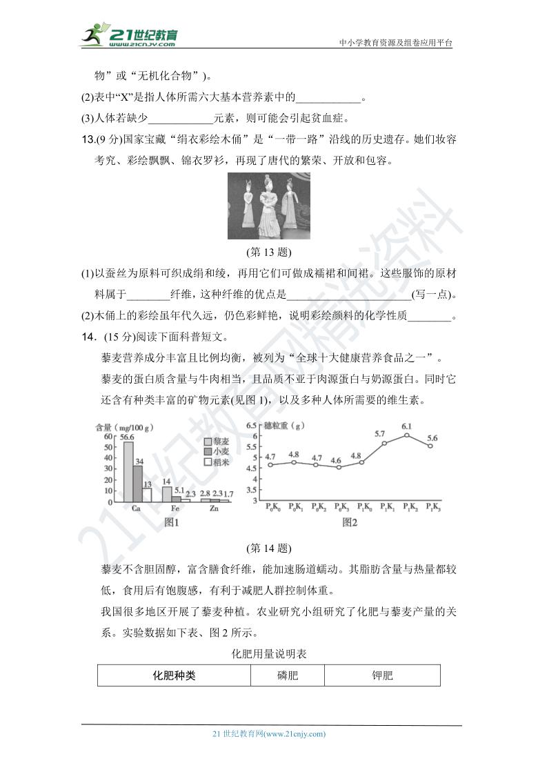 人教版九年级化学下册 名校优选精练 第十二单元达标测试卷(含答案或解析)