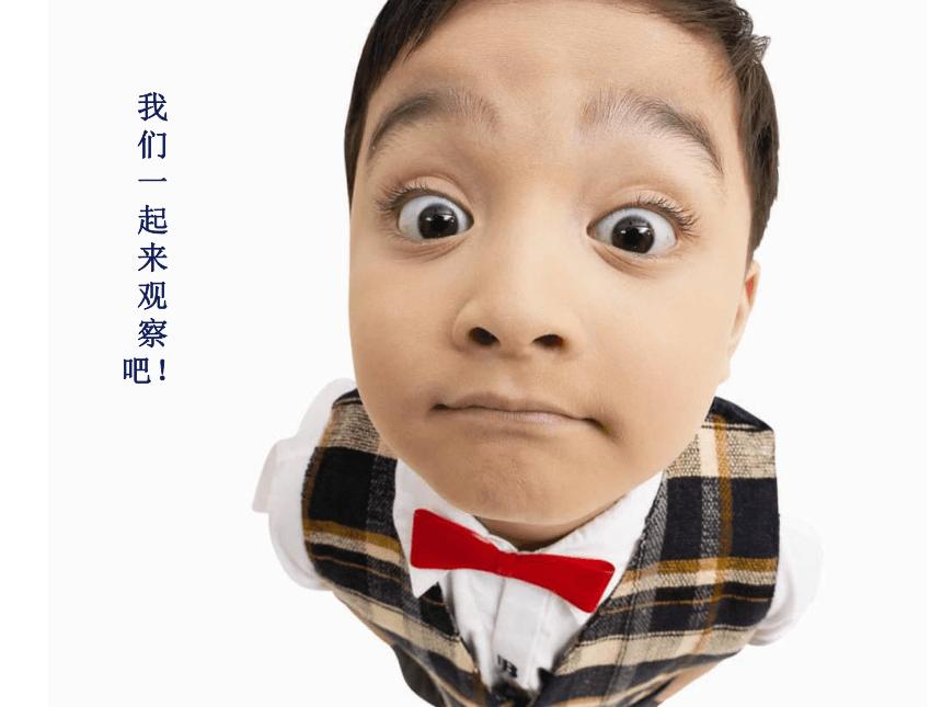 冀美版 四下美术 4.生动的表情 课件(29张PPT)