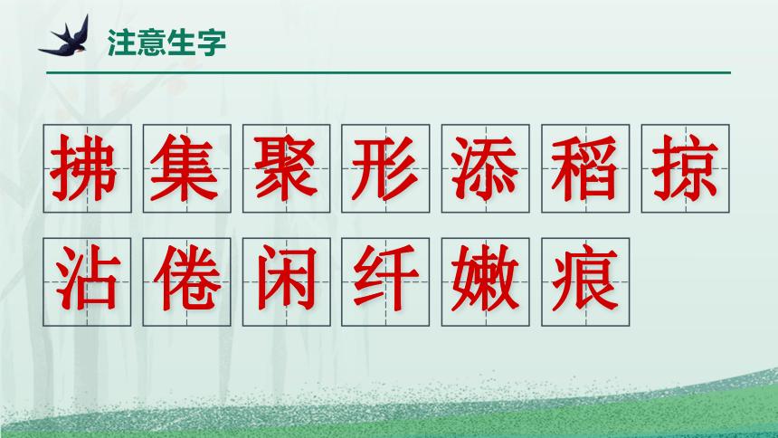 2 燕子  课件(20张)