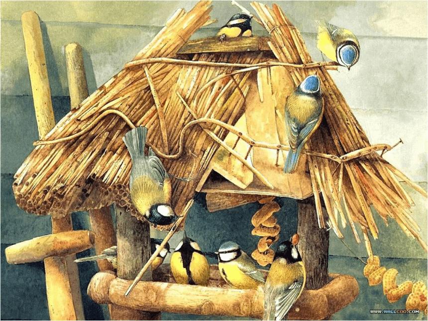 5.快乐的小鸟 课件( 28张PPT)