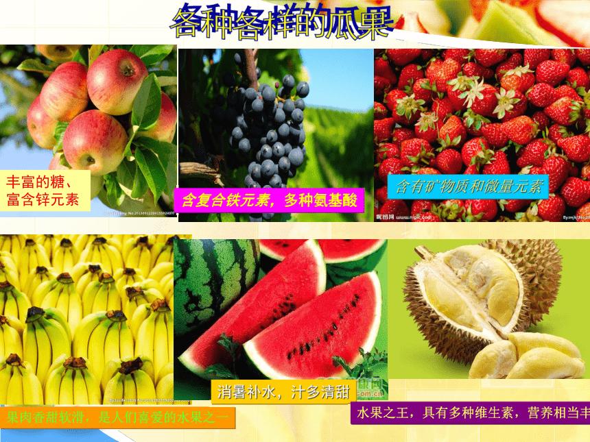 岭南版  8  吃瓜果的人 课件(18张PPT)
