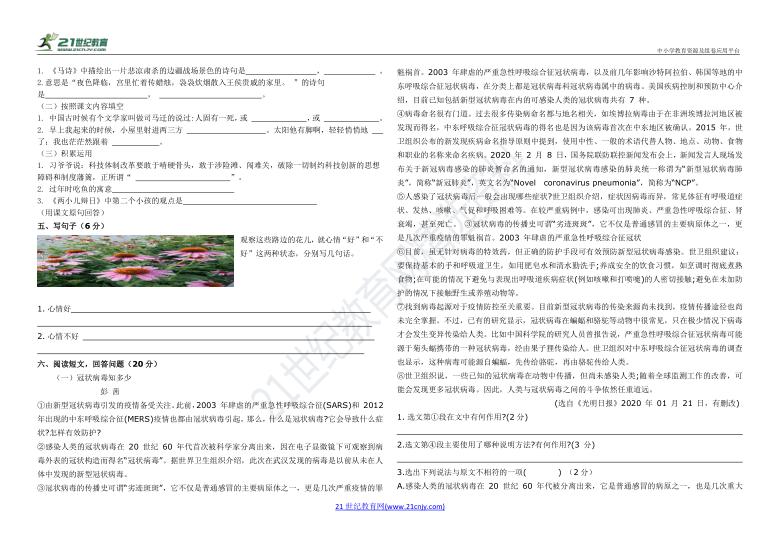 部编版小学语文小升初测试题(含答案)