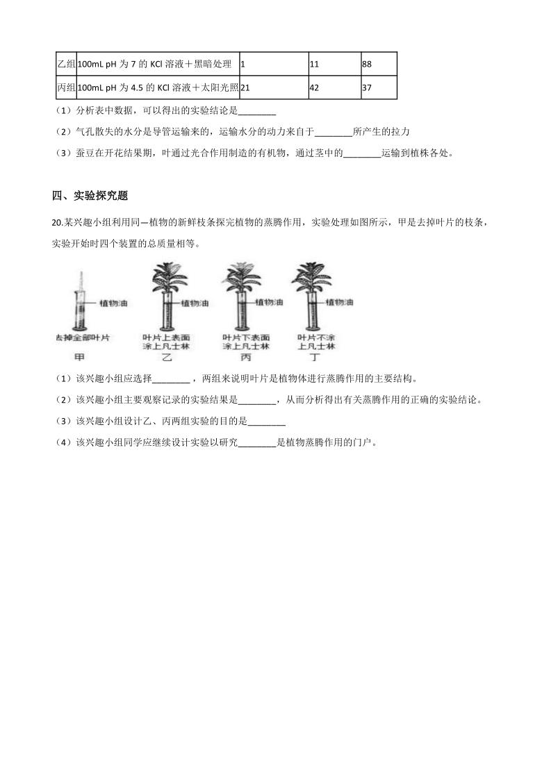 4.5植物的叶与蒸腾作用 同步练习(含解析)