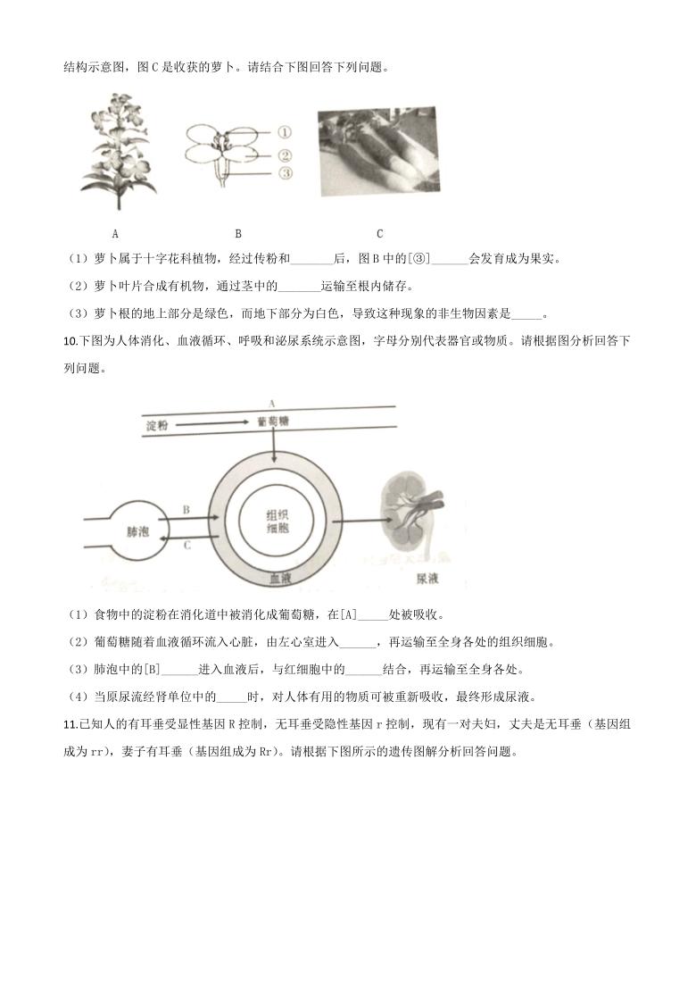 精品解析:甘肃省平凉市2020年中考生物试题(word版 无答案)