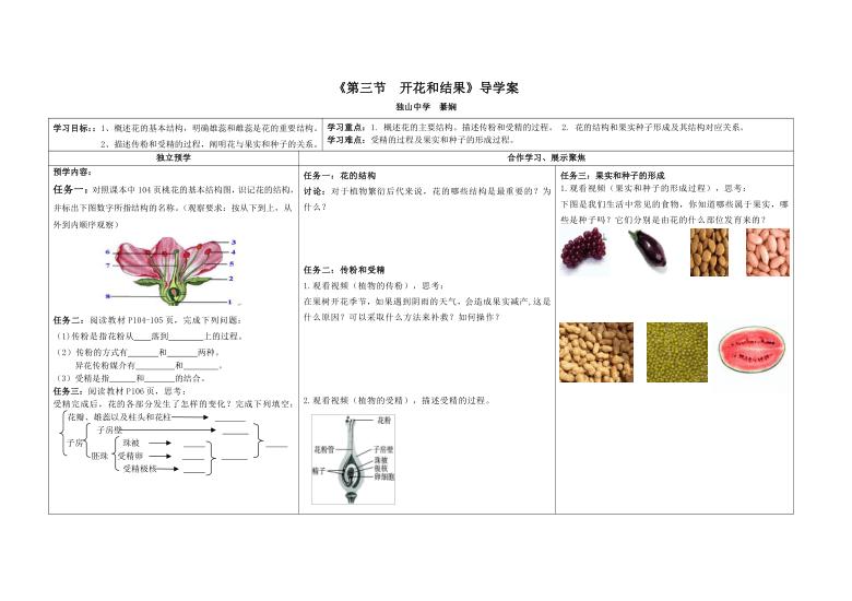 人教版生物七年级上册3.2.3《开花和结果》导学案(无答案)