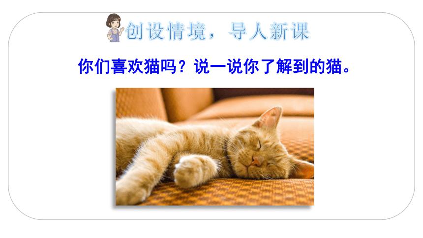 13 猫    课件(2课时  34张ppt)