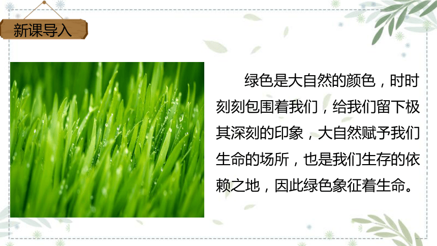10.绿  课件(共32张PPT)