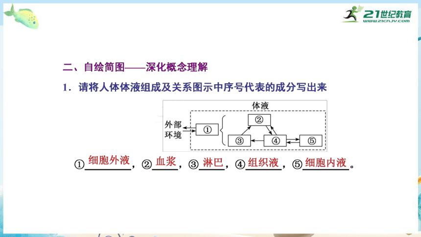 高三生物三轮复习专项突破8  内环境稳态及其调节(共31张PPT)