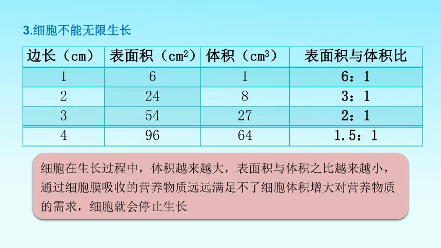 2.2.1细胞通过分裂产生新细胞  课件 (共25张PPT)  2021-2022学年初中生物人教版七年级上册
